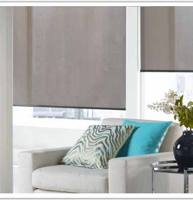 Roller Shades - BTX/Coulisse